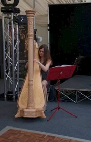 May Ball Harpist